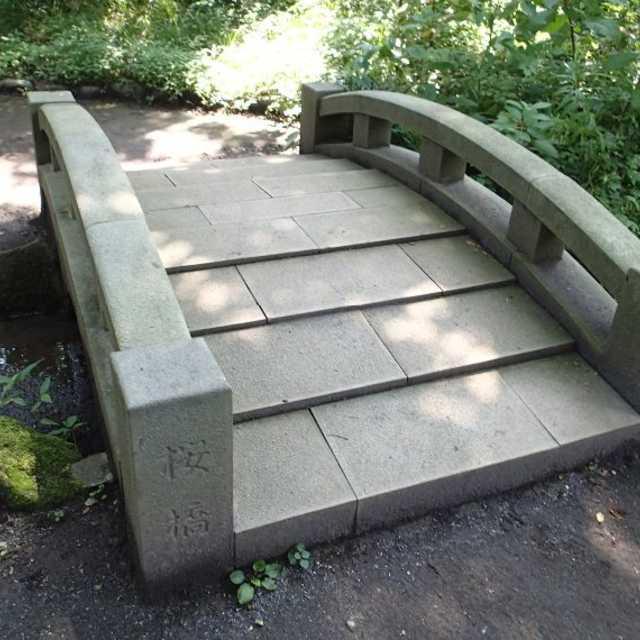 希少価値のある橋!?