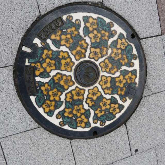 常陸太田市の花「やまぶき」