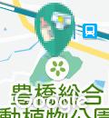 豊橋市自然史博物館(1F)