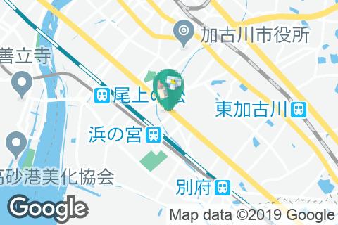 エディオン 新加古川店