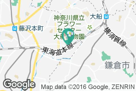 ミズノフットサルプラザ藤沢の授乳室・オムツ替え台情報