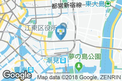 江東区立東陽公園(1F 多機能トイレ)のオムツ替え台情報