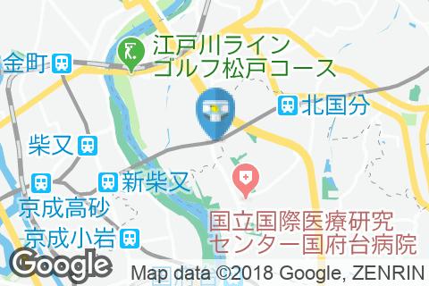矢切駅(改札内)のオムツ替え台情報