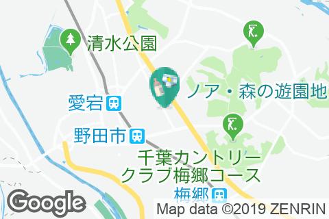 しゃぶしゃぶ亭どん 野田店(1F)