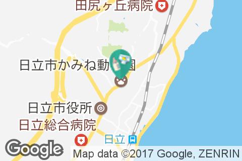 日立市かみね動物園(1F)