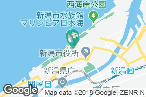 新潟縣護國神社(1F)の授乳室・オムツ替え台情報