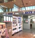 ヤマダ電機 テックランドNew座間店(1F)のオムツ替え台情報