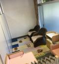 花の文化園(1F)の授乳室・オムツ替え台情報