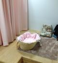 相模川ふれあい科学館(1F)の授乳室・オムツ替え台情報