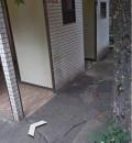 初台駅前 公衆トイレ(1F)のオムツ替え台情報