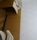 ライフ 志紀店(2F)の授乳室・オムツ替え台情報