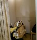 ららぽーと富士見(1F)の授乳室・オムツ替え台情報