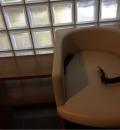 東山動植物園星が丘門(1F)の授乳室・オムツ替え台情報