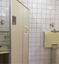 げんきの郷(男子トイレ1つ、女子トイレ2つ(トイレ内、ホール内)、多目的トイレ1つ)のオムツ替え台情報