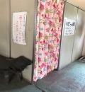 宇都宮動物園の授乳室・オムツ替え台情報