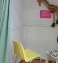 横浜美術館(2階レクチャーホール入口脇)の授乳室・オムツ替え台情報