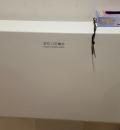 横浜ベイホテル東急(B1)の授乳室・オムツ替え台情報