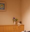 カトリック麹町聖イグナチオ教会(3F)の授乳室情報