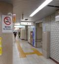 都営三田線 春日駅(改札内 各トイレ内)のオムツ替え台情報