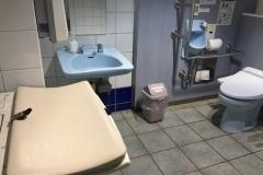 軽井沢駅北口(1F 多目的トイレ内)のオムツ替え台情報