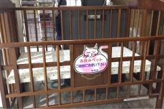 八幡市役所本館の授乳室・オムツ替え台情報
