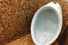 マクドナルド 相模原古淵店(1F)のオムツ替え台情報