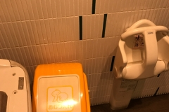 LUZ自由が丘(B1F 多目的トイレ内)のオムツ替え台情報