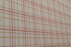 ピオレ明石(2F)の授乳室・オムツ替え台情報