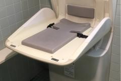 ニトリ 盛岡店(1F 多目的トイレ内)のオムツ替え台情報