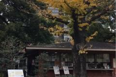 都立 日比谷公園の授乳室・オムツ替え台情報