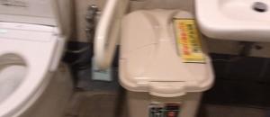 メガマックス千葉NT店(多目的トイレ内)のオムツ替え台情報