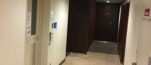 新東京ビル(B1階 多目的トイレ)のオムツ替え台情報