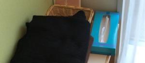 サンゲツ福岡ショールーム(1F)の授乳室・オムツ替え台情報