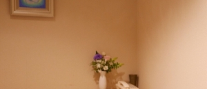 カトリック麹町聖イグナチオ教会(1F)の授乳室・オムツ替え台情報