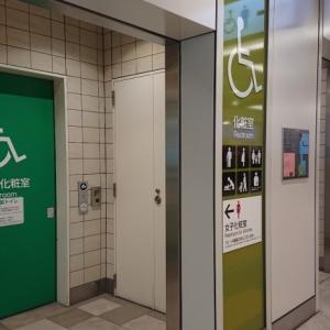 JR新宿駅 ミライナタワー・甲州街道・新南改札内多目的トイレ(2F)のオムツ替え台情報 画像1