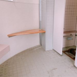 女性用トイレ 台