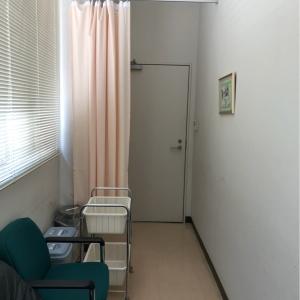 部屋の奥から入り口を見たところ。カーテンで仕切れます。