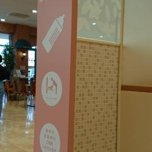 フジグラン野市(フードコート トイレ横)の授乳室・オムツ替え台情報 画像2