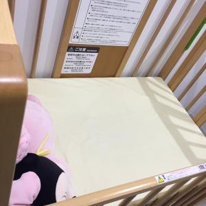 鯖江市西山動物園道の駅(1F)の授乳室・オムツ替え台情報 画像2