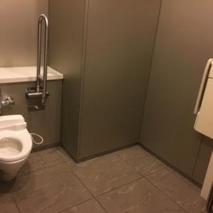 ホテル椿山荘東京(プラザ棟2F(多目的化粧室))のオムツ替え台情報 画像1