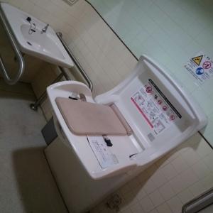 ウエストプラザ1番地(2F 多目的トイレ内)のオムツ替え台情報 画像1