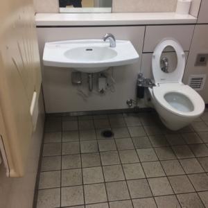 大人と一緒に入れるトイレは右に椅子もあります。広いです