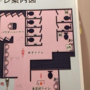 小田急電鉄 本厚木駅(改札内)のオムツ替え台情報 画像1