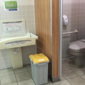 ポールスターショッピングセンター((2階ヨガスタジオ側女性用トイレ内))のオムツ替え台情報 画像2
