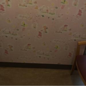 巻石堂病院(1F)の授乳室・オムツ替え台情報 画像3