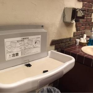 マンマパスタ六会店(女子トイレ内)のオムツ替え台情報 画像2