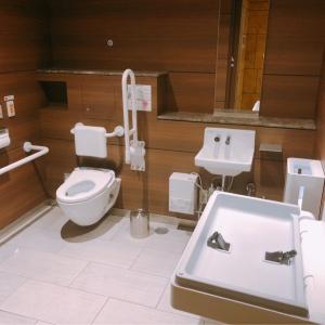 六本木ヒルズ けやき坂通りブリッジレベル2F 多目的トイレ(2F)のオムツ替え台情報 画像1