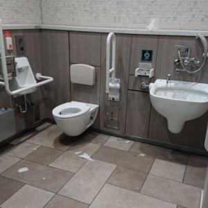 JR新宿駅 ミライナタワー・甲州街道・新南改札内多目的トイレ(2F)のオムツ替え台情報 画像3