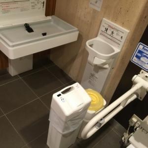 ホテル椿山荘東京(プラザ棟2F(多目的化粧室))のオムツ替え台情報 画像3