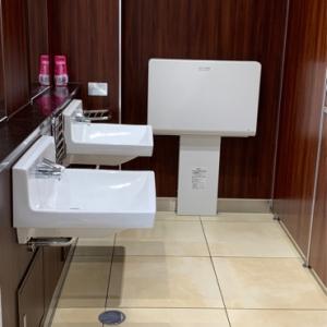 女性トイレにも交換台があります。